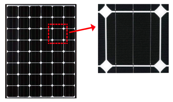 پنل خورشیدی مونوکریستالین-تکسا